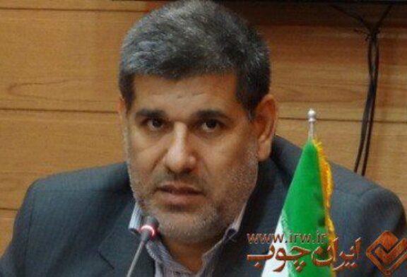 تجارت چوب در ۲۵۰۰ هکتار اراضی استان بوشهر ایجاد میشود