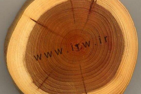 چوب چیست؟