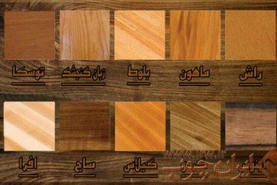 کاربرد انواع چوب - چوب های مورد استفاده در هنر منبت