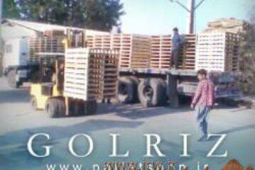 صنایع چوبی گلریز