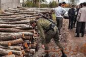 کشف ۱۸ تُن چوب قاچاق در شهرستان اردستان