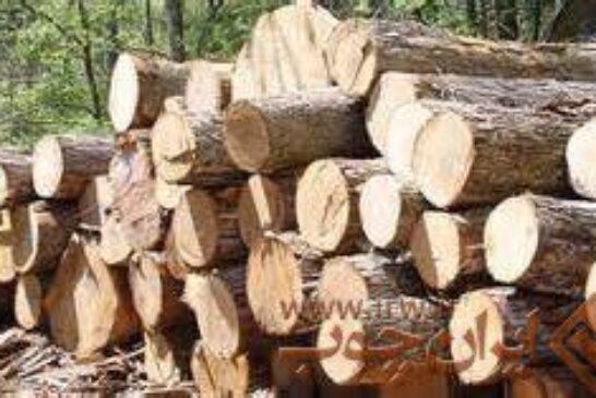 قاچاق چوب در مازندران کاهش یافت