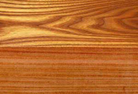 انواع چوب و خواص آن