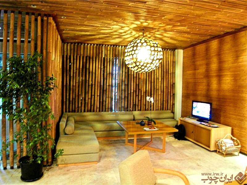 for Native house interior designs