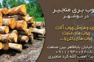 چوب بری منجیر