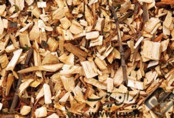 بررسی تاثیر شکل هندسی خرده چوب بر روی خواص مکانیکی و فیزیکی تخته خرده چوب