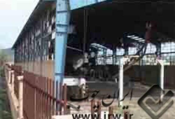 ۵ کارخانه تولید ام دی اف در گیلان احداث میشود.