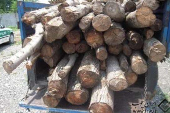 محموله چوب قاچاق در شهرستان رشت کشف و ضبط شد