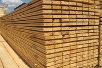 مین چوب کاسپین