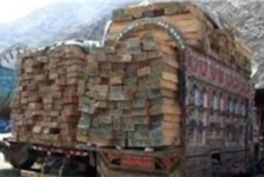 ۹۵ مترمکعب چوب در بندرنوشهر امحا شد