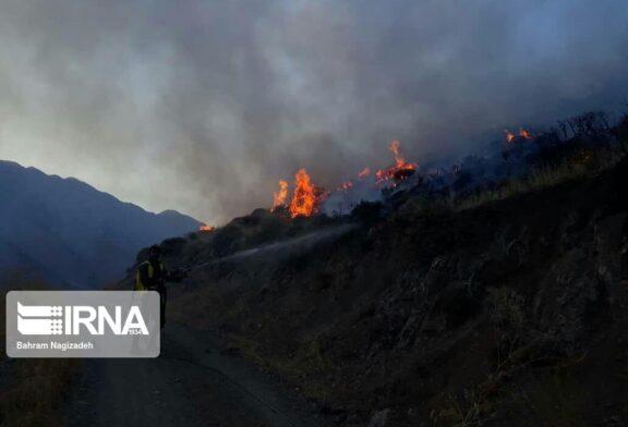 پنجشنبه و جمعه آتشین جنگلهای مازندران