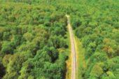 سند برای جنگلهای مازندران