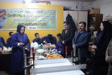 اولین دوره چوب و رزین کشور ویژه توانجویان در کردستان برگزار شد